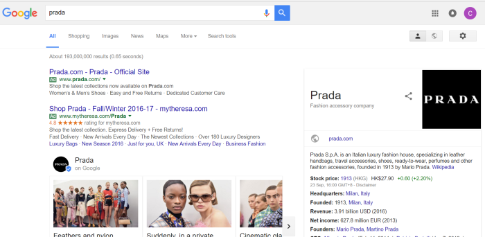 overview-serps-page-prada-seo101-serps
